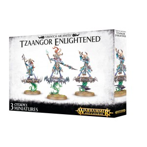WARHAMMER AGE OF SIGMAR TZAANGOR ENLIGHTENED 83-74