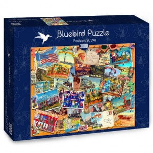PUZZLE 3000 BLUEBIRD GARRY WALTON POSTCARD USA